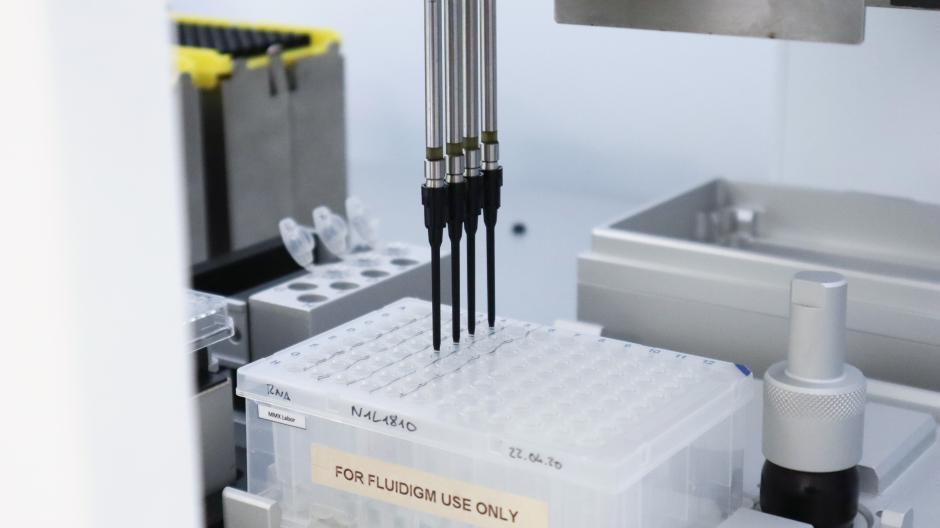 In solche Testplatten werden die Proben gefüllt. Ein Klassenpool würde in ein Loch passen, in dem auch die Probe für einen Einzel-PCR-Test untergebracht wird.