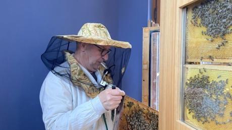 Imker Ernst Häderer brachte die Museumsbienen zurück aus dem Winterquartier in ihre Sommerresidenz im Vöhlinschloss in Illertissen.