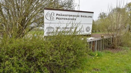 Ein Schild weist auf die Bedeutung des Steinzeitdorfs bei Pestenacker hin. Seit 2011 ist es Unesco-Welterbestätte. Doch es gibt Meinungsverschiedenheiten zwischen Förderverein und Landratsamt.