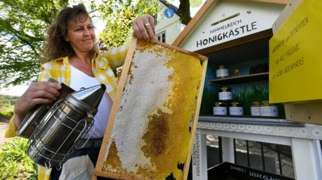 Sonja Just zeigt ihren Bienenstand in Wollishausen. Die Flugbegleiterin kann bei diesem Hobby von der Arbeit entspannen.