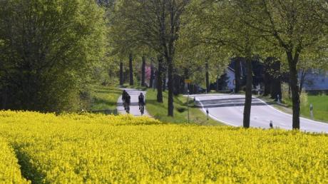 Nachdem man die drei Landkreise Augsburg, Günzburg und Dillingen tangiert hat, winkt zwischen Ellerbach und Villenbach eine Fahrt durchs Paradies. Aber auch hier bei Röfingen hat die von Rapsfeldern eingerahmte Landschaft einiges zu bieten.