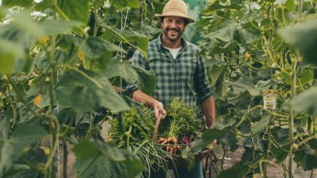 Markus Sämmer baut im eigenen Garten Obst und Gemüse an.