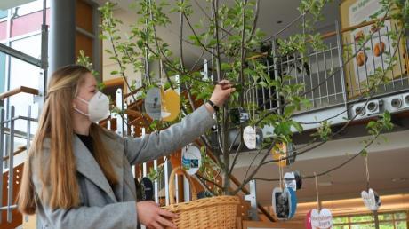 Dieses Apfelbäumchen wird im Herbst auf der großen Streuobstwiese am Kloster Roggenburg eingepflanzt. Zu einem Aktionstag wurden symbolisch Früchte aus Papier daran gehängt.