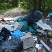 Das Bild zeigt einen Müllhaufen im Wald bei Blaubeuren-Asch. Der Müll wurde Mitte Mai im Gewann-Schlag zwischen Asch und Bühlenhausen nahe der Landesstraße entdeckt.