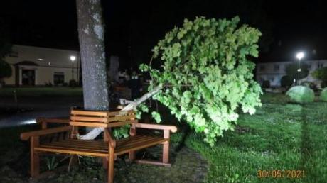 In Klosterlechfeld haben Jugendliche einen Baum vor der Kirche umgetreten. Ein Anwohner bemerkte den Lärm in der Nacht.
