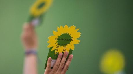 Die Grünen haben in Günzburg einen neuen Ortsverband gegründet.