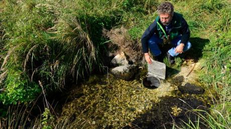 Diplombiologe Dr. Ulrich Mäck von der Arge Donaumoos hat die Wiedervernässung des Leipheimer Moors erfolgreich vorangetrieben.