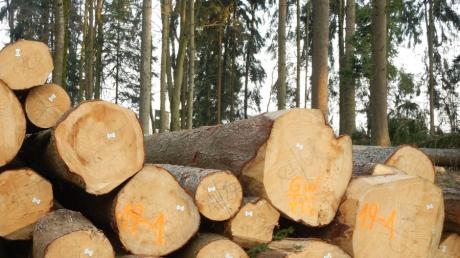 Die Nachfrage nach Holz ist derzeit groß.