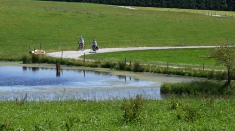 Bei den Schweinsbachhöfen zwischen Grimoldsried und Konradshofen kommt man auf der Tour durch die Stauden an diesem malerischen Weiher vorbei.