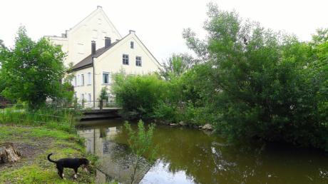 Welcher Flusskategorie ist die Butzengünz zuzurechnen und wer ist für die Gewässerpflege verantwortlich? Diese Fragen wurden vor dem Verwaltungsgericht Augsburg verhandelt.