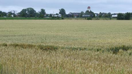Noch sind hier Felder. Künftig soll hier das Gewerbegebiet Langweid Nord seinen Platz finden, beschloss der Gemeinderat trotz Kritik an den Plänen.