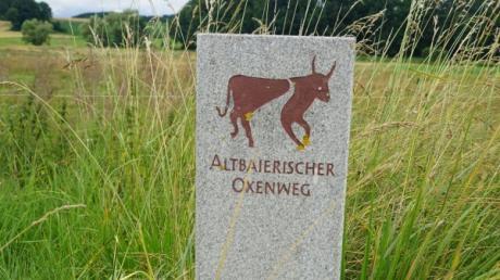 Steine zeigen den Verlauf des Altbairischen Oxenwegs bei Adelzhausen, zum Beispiel in Irschenhofen an der Kreuzung der Staatsstraße.