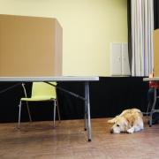 Wie fallen die Ergebnisse der Bundestagswahl 2021 aus? Für den Wahlkreis Schweinfurt in Bayern erfahren Sie das hier.