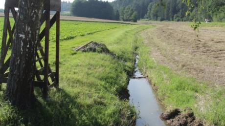 Nach dem Hochwasser des Krähenbachs im Kammeltaler Ortsteil Ettenbeuren werden mit einem Bürgerantrag Schutzmaßnahmen von der Gemeinde gefordert.