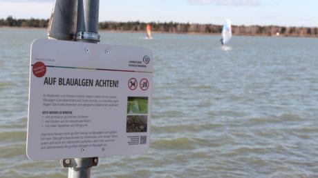 Diese Schilder warnen vor der Gefahr durch die Blaualgen am Mandichosee.