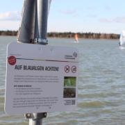"""Am Mandichosee wurden vor zwei Jahren erstmals Blaualgen der Gattung """"Tychonema"""" festgestellt. Seitdem warnen Schilder vor der Gefahr. Am Donnerstag wurde vorsorglich Badeverbot erlassen."""