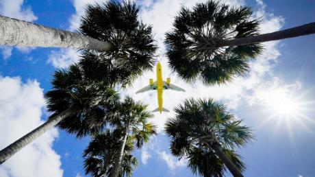 Ein Passagierflugzeug vor der Landung auf dem Flughafen Tampa im US-BundesstaatFlorida. Wann Europäer wieder in die Staaten einreisen dürfen, ist noch unklar.