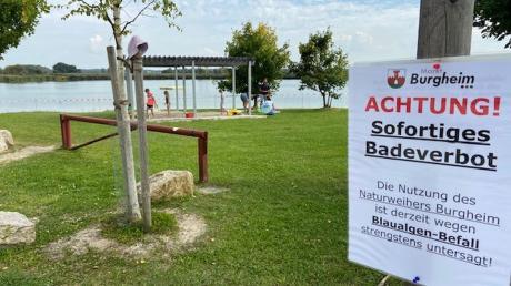 Schilder am Burgheimer Weiher weisen auf das Badeverbot hin.