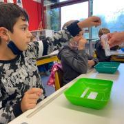 PCR-Pooltest in einer zweiten Klasse der Grundschule Deisenhausen.