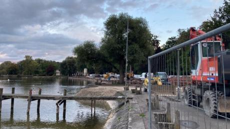 Die Weide an der Nordseite der Mühbachmündung in den Dießener Seeanlagen steht dem Bau der neuen Uferbefestigung im Weg.