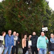 Mehr als 50 Anwohner protestieren gegen geplante Baumfällungen für einen Neubau in der Kilianstraße.
