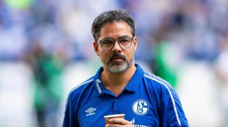 Schalke-Trainer David Wagner. Foto: Guido Kirchner/dpa