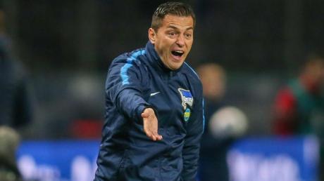 Kassierte mit Hertha BSC drei Niederlagen nacheinander: Cheftrainer Ante Covic schreit vom Spielfeldrand aus. Foto: Andreas Gora/dpa