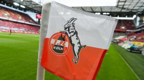 Die Trainersuche beim Fußball-Bundesligisten 1. FC Köln dauert an. Foto: Christophe Gateau/dpa
