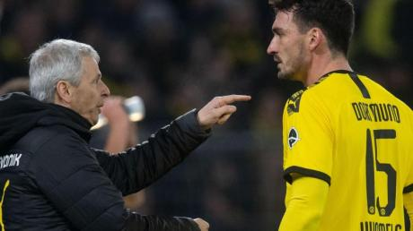 BVB-Trainer Lucien Favre (l) muss gegen Düsseldorf auf Mats Hummels verzichten.