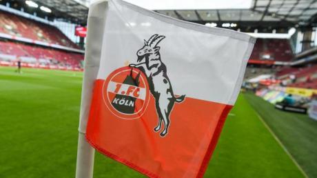 Der 1. FC Köln stellt seinen Trainingsbetrieb vorerst ein.