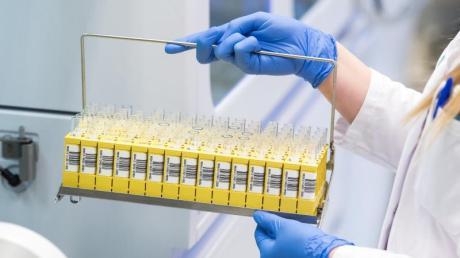 Für Geisterspiele müssten die Profis nach Ansicht des Virologen Alexander Kekulé isoliert und regelmäßig getestet werden.