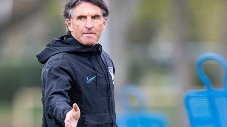 Bruno Labbadia gibt sein Debüt an der Seitenlinie als Trainer von Hertha BSC.