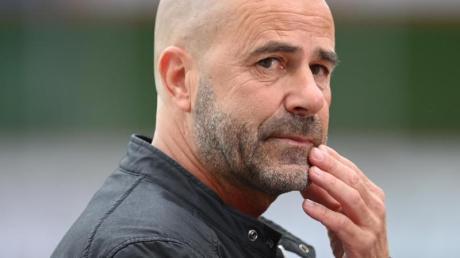 Bayer-Trainer Peter Bosz will mit seinen Leverkusenern in die Champions League einziehen.