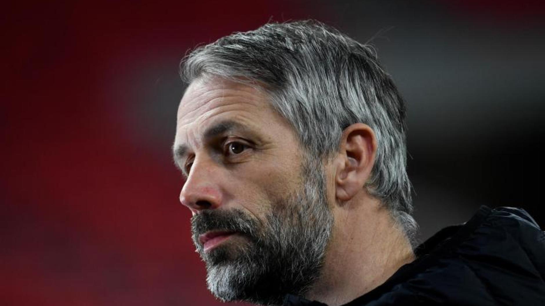 Trainer Mönchengladbach