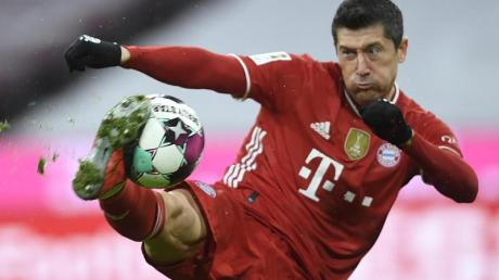 Bayern-Stürmer Robert Lewandowski hofft auf Treffer Nummer 41.