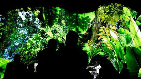 Grün ist hier nur das Bild auf den Fernsehschirmen. Wer beim Technikkauf auf Umweltschutz und Nachhaltigkeit achten will, muss danach länger suchen.