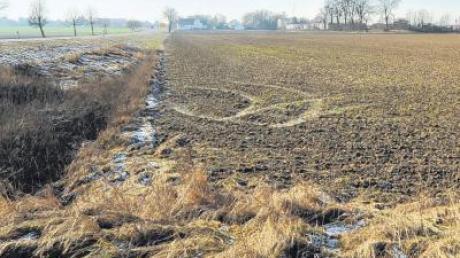 Hier könnte künftig der vierte Solarpark in Blindheim entstehen. Der Gemeinderat hat bei seiner Sitzung den Plänen grundsätzlich zugestimmt.