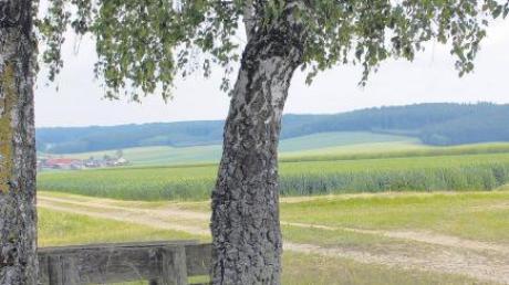 Von diesem idyllischen Plätzchen aus kann man in Zukunft vielleicht nicht nur auf Heudorf hinabblicken, sondern auch drei Windrädern auf dem Gebiet der Gemeinde Glött bei der Stromerzeugung zuschauen.