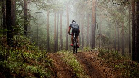 Bayerns Wälder sind ein Paradies für Mountainbiker. Immer wieder kommt es aber zum Streit zwischen Radlern und Waldbesitzern.