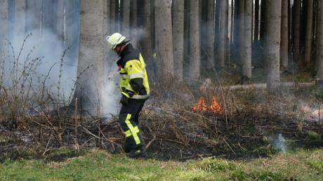 Soweit wie auf diesem Bild ist es im Landkreis Dillingen noch nicht gekommen, die Feuerwehren mussten noch nicht ausrücken. Dennoch besteht Waldbrandgefahr der mittleren und hohen Stufe.