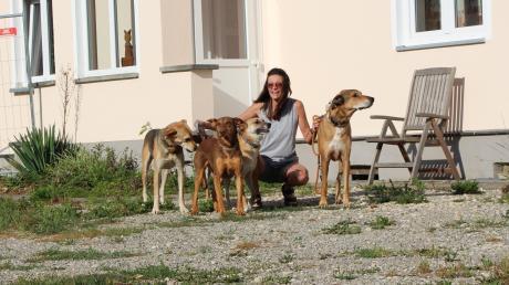 Doris Bobinger aus dem Wertinger Stadtteil Possenried lebt insgesamt mit sieben Hunden und drei Katzen zusammen – allesamt Mischlinge, die sie aus verschiedenen Ländern geholt hat, da sie dort niemand haben wollte. Ihr Leben ist zum größten Teil auf die Bedürfnisse der Tiere ausgerichtet.