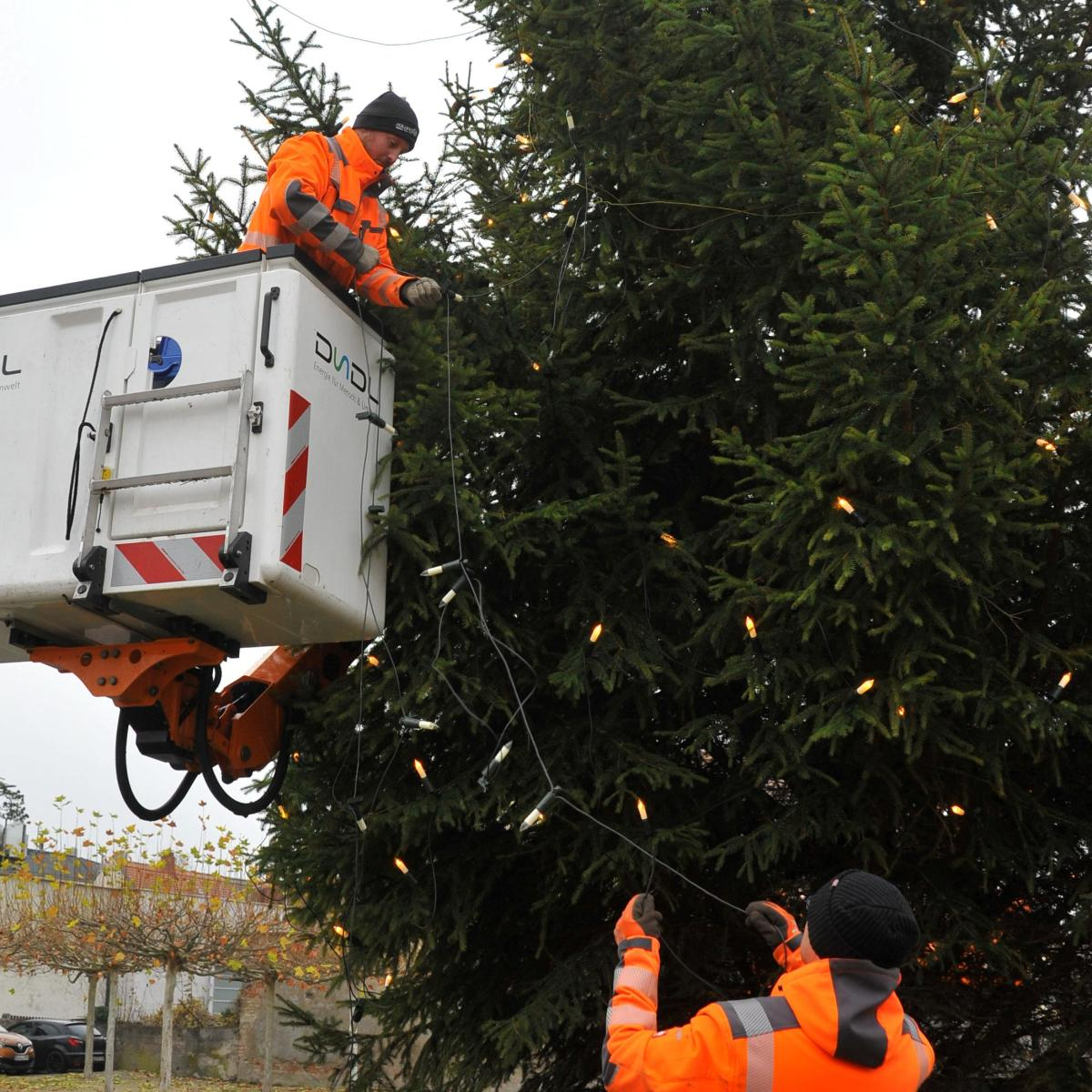 Weihnachtsbaum Schneit.Dillingen O Tannenbaum Nachrichten Dillingen Augsburger Allgemeine