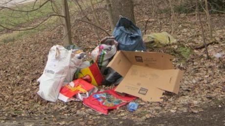 Im Bereich des Wanderparkplatzes zwischen Medlingen und Sachsenhausen ist erneut Müll (Symbolfoto) abgelagert worden.
