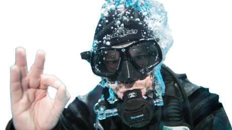 Berufstaucher werden die Unterwasserpflanze Karolina Haarnixe in Höchstädter Baggerseen entfernen.