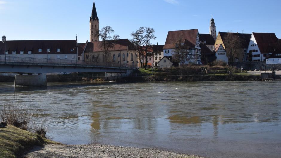 Lady Lauingen (Donau)