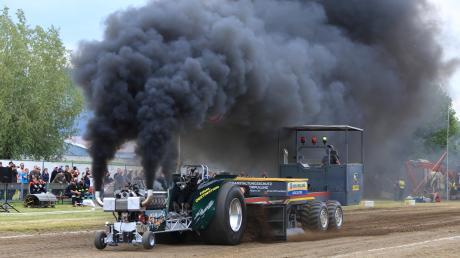 Da raucht es aus den Auspuffen: Das Tractor Pulling in Holzheim zog am Wochenende Besucher in Bann.