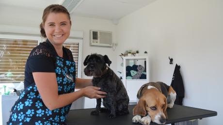 Schnauzerdame Vaja muss regelmäßig zum Friseur. Inzwischen ist der Besuch im Hundesalon für sie längst zur Routine geworden. Auch Beagle Lucky steht gerne im Mittelpunkt und lässt sich von seiner Besitzerin Tina Horsinka bürsten und baden.