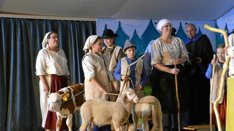Beim Streit der Oberliezheimer mit den Hochsteinern um das Weiderecht auf einer Wiese durften die leibhaftigen Tiere auf der Bühne nicht fehlen. Der heilige Leonhard (rechts) beobachtet die Szene mit skeptischen Blick.