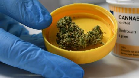 Etwas Cannabis fand die Polizei bei drei Jugendlichen in Steinheim.