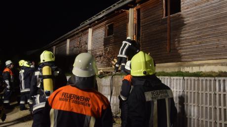 In Bissingen ist am Mittwochabend ein Schweinestall in Brand geraten. Ein Großaufgebot an Feuerwehrleuten war im Löscheinsatz.